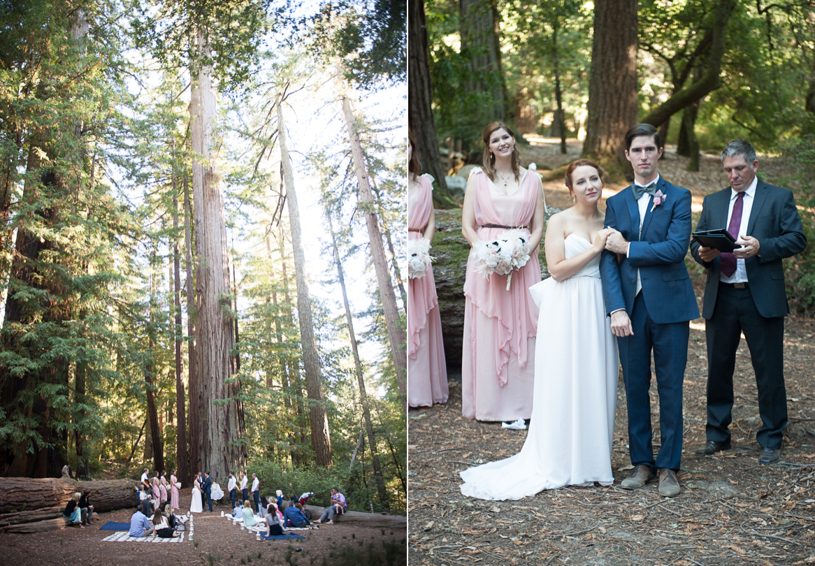 redwood forest wedding san luis obispo